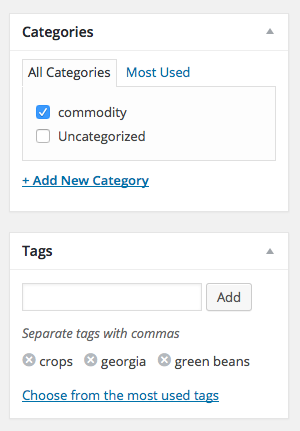 Figure 11. Add categories and tags.