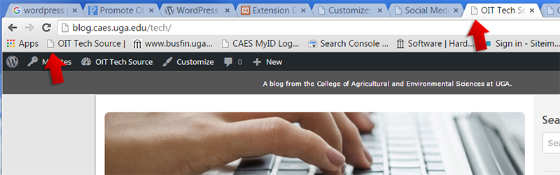 favicon on web browser