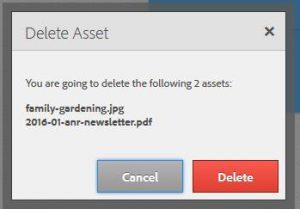 AEM-delete-asset-box