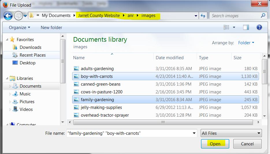 AEM-file-upload-document-list