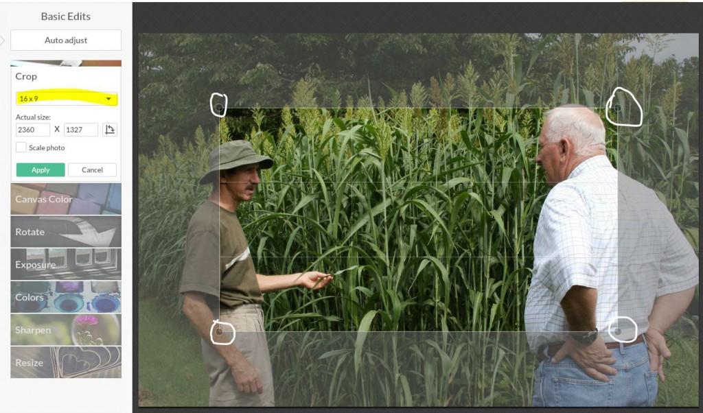 16-9-crop-image