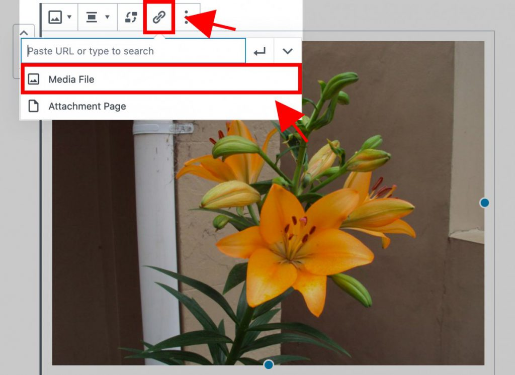 Selecting Insert Link and then Media File on image block
