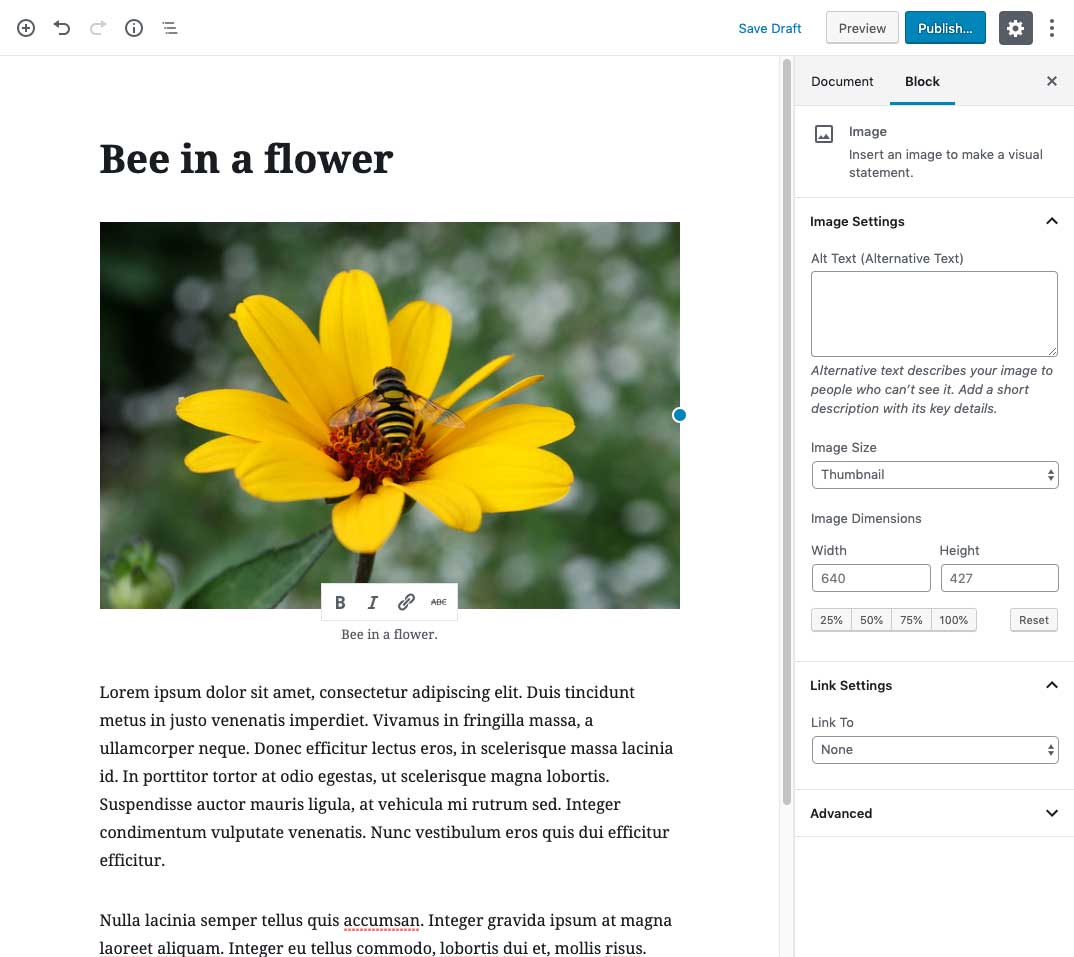 Edit post page with an image and two paragraph blocks.