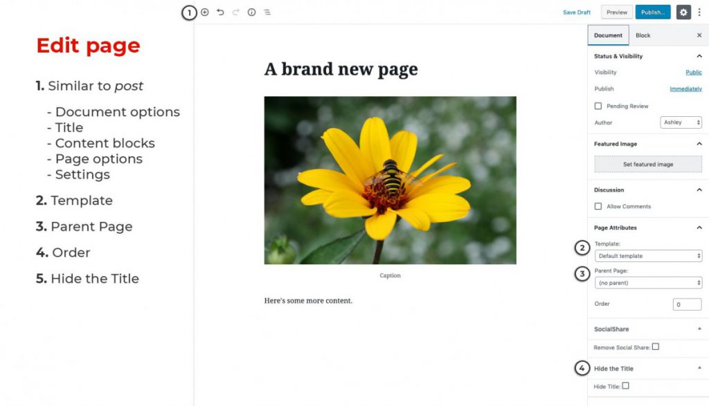 Create a page screen.