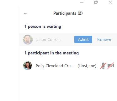 PIcture showing the Admit button, which must be clicked to allow a student to enter the online meeting.