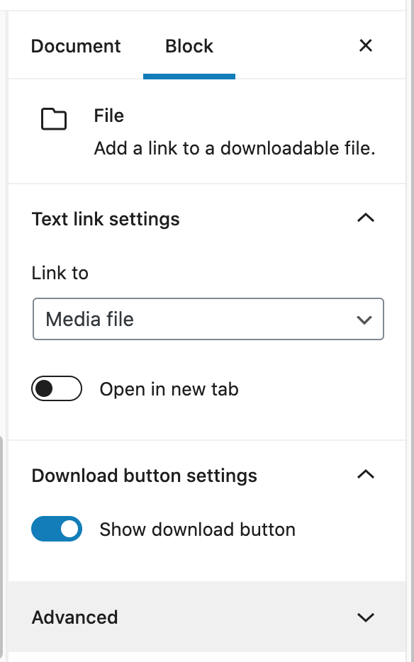 File block settings, includes select option for link to, toggle for open in new tab, and toggle for show download button (on by default)