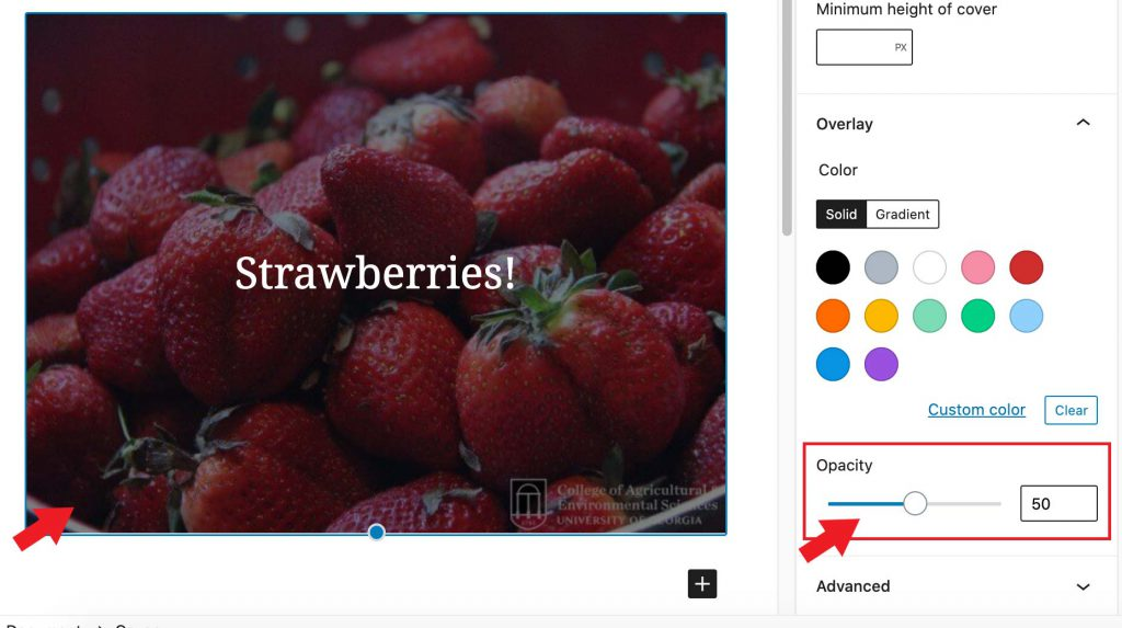 A cover block in the WordPress editor with an image background.