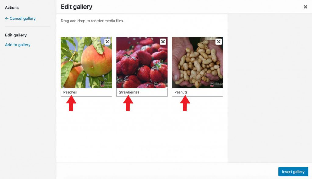Creating an image gallery.